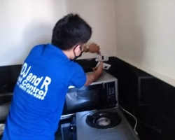 pest control products davao