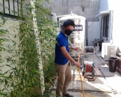 Pest control in davao