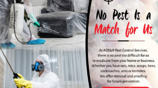 No Pest Is a Match for Us At ADJ&R Pest Control Services, there is no pest too …