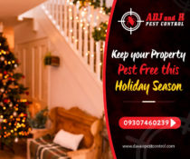 Keep your Property Pest Free this Holiday Season  For your pest problem, contact…