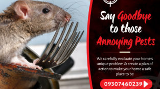 Say Goodbye to those Annoying Pests  We carefully evaluate your home's unique pr…