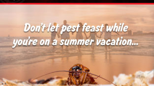 Don't let pest feast while you're on a summer vacation…  For your pest problem…