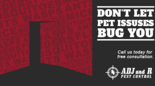 Don't let pest issues bug you  Call us today for free consultation  Address…