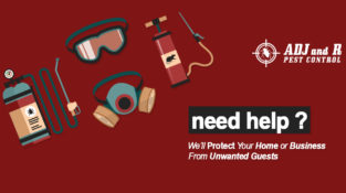 Need Help?  Well Protect Your Home or Business From Unwanted Guests  Address: AD…