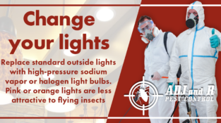 Change your lights  Replace standard outside lights with high-pressure sodium va…