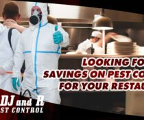 Looking for cost savings on pest control for your restaurant? Book an inspection…