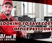 Looking to save costs on office pest control?  Book an inspection and get a free…