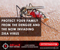 Protect your family from the Dengue and the now invading Zika Virus  Book an ins…