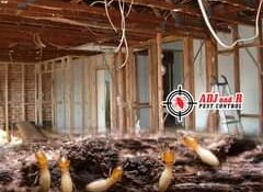 Did you know that termites can devalue your property by more than 25%?  Termites…