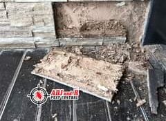 Get a FREE termite inspection with ADJ and R Pest Control before buying or movin…