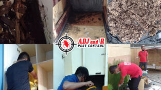 Termite treatment @ Ruby Subdivision. Thank you for trusting ADJ and R Pest…