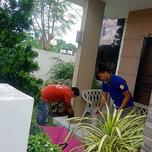 pest control services in Davao City